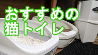 【2019年決定版】猫トイレのおすすめ|実用的・おしゃれ・高性能で選ぶ